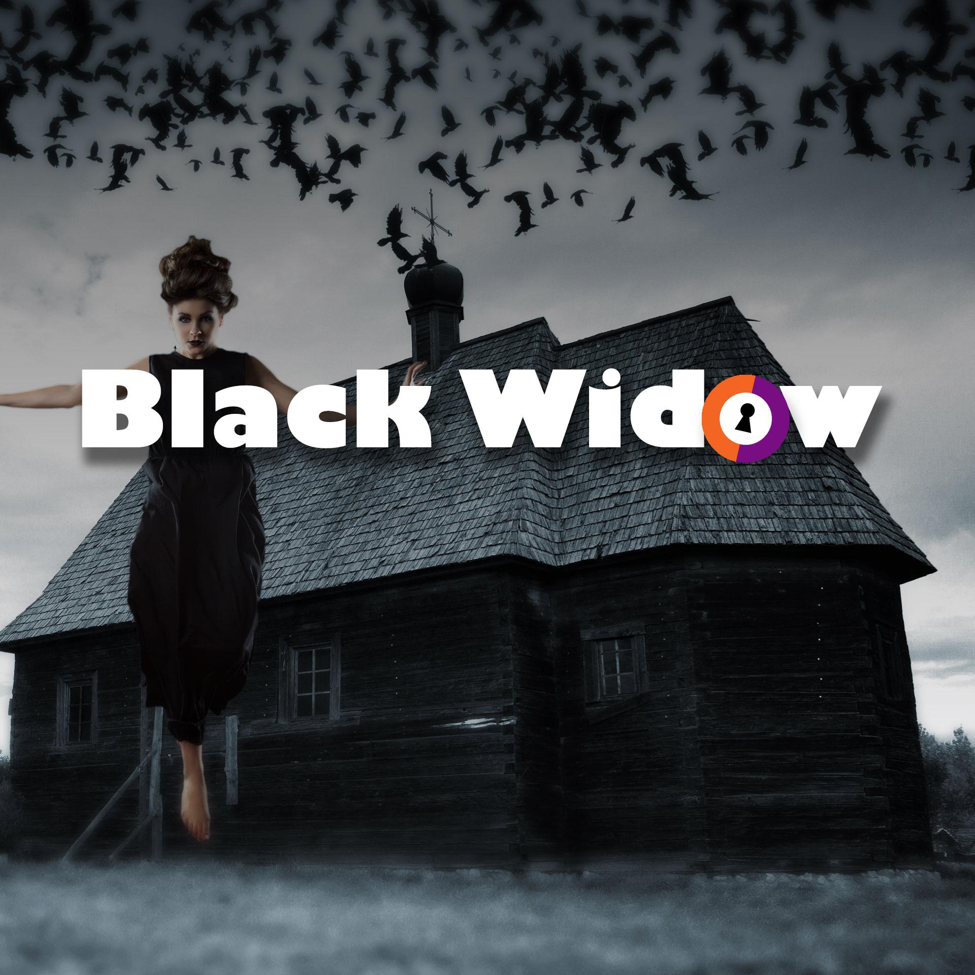 Black Widow Escape Room